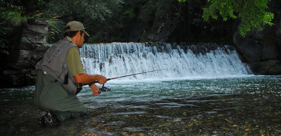 Les bassins payants pour la pêche dans le domaine de Vologda